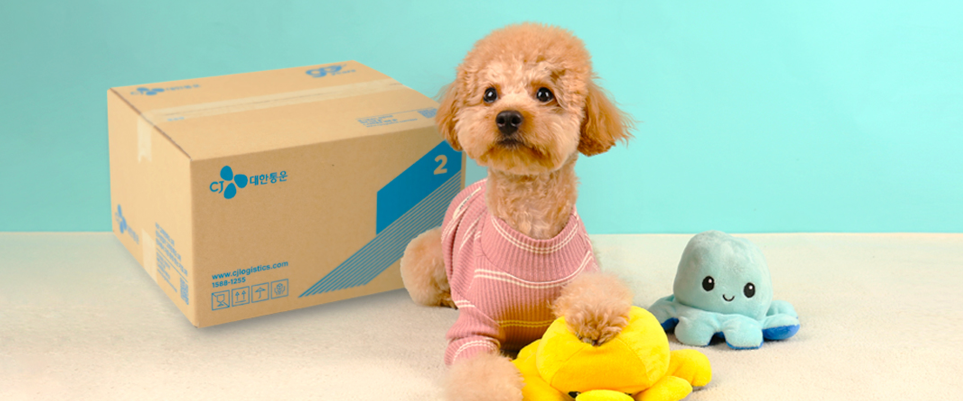 Petconomy, which has soared with the stay-at-home trend, now takes wing with fulfillment services