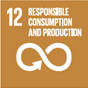 12. Ensuring sustainable consumption and production patterns