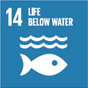 14. Conserving and sustainably using the oceans, seas and marine resources for sustainable development