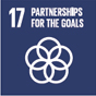 17. Strengthening the means of implementation and revitalizing the global partnership for sustainable development